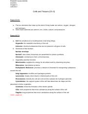Cells and Tissues (Ch 3) Pt 1.docx