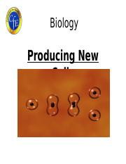 n4n5_producing_new_cells_powerpoint.ppt