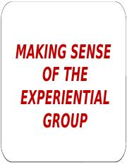 MAKING SENSE OF GROUP EXPERIENCE.pptx