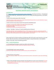 Marisol Ponce - Bacterial-Identification-Lab-Worksheet-Student HHMI.docx