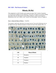 Mitosis, Oh My! Assignment Unit E