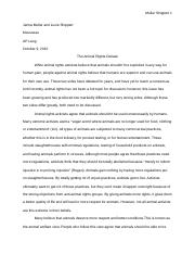 Comparitive Essay
