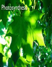 Photosynthesis%20Fall%202016%20Outline.pdf