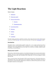 The Light Reactions Review- 09.10.15.docx