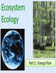 Ecosystem Ecology Part 2 Energy Flow