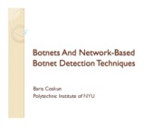 Lecture 12 - botnetDetection
