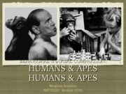 Behavorial & Social Comparison- Humans & Apes