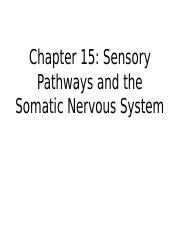 Chapter 15 - Sensory Pathways and the Somatic Nervous System 2016