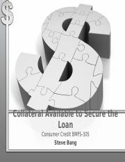 Chapter 5 - Collateral Available to Secure the Loan(2)