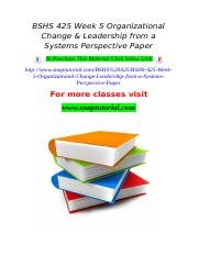 BSHS 425 Week 5 Organizational Change & Leadership from a Systems Perspective Paper.doc