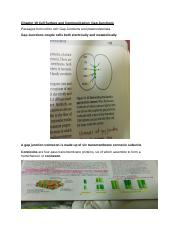 Cell Biology Chapter 19_Cell Surface and Communication_GAP Junction.docx