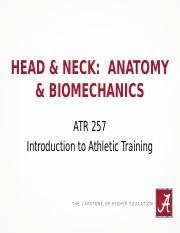 11- Spine, Head & Face Anatomy and Biomechanics F15