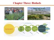 Chapter Three Biofuel