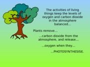 Carbon Cycle - simpsons