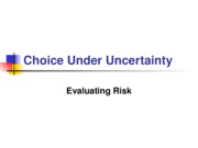 L06 Choice Under Uncertainty