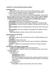 Anatomy and Physiology II- Chapter 14 Notes doc