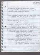 Lecture 4 Notes Biology