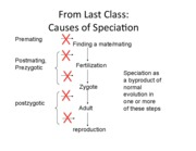 lecture_15_speciation_SW_updated