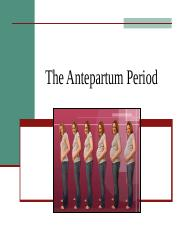 2. The Antepartum Period.ppt