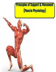Chapter 7 Muscle Physiology.pdf