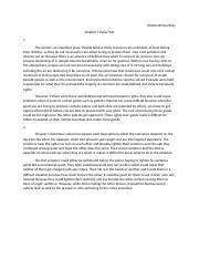 McCourtney Chp 1 Essay.docx