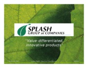 Splash Corporation (A) Competing With the Big Brands
