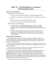 Marketing Plan Instructions Fall 2013