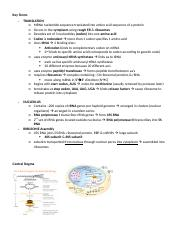 11 - Translation Outline