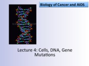 Lecture 4: Cells, DNA, Gene Mutations