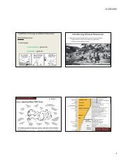 Energy and MIneral Resources Chapter 12.pdf