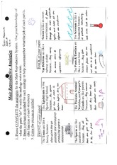 Male Reproductive Analogies Worksheet