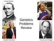 Genetics Problems Review