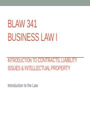 Chapters 1 Introduction (Law as a Foundation for Business), Chapter 3-The Court System
