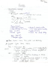 SBI3U1 Circulatory System Notes