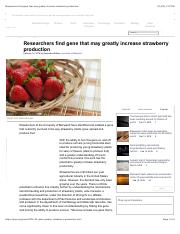 Researchers find gene that may greatly increase strawberry production.pdf