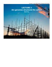 #3 Are Genome Structures The Same? .pdf