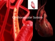 Week 1&2_Cardiovascular_upload.pptx