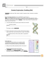 Building DNA Gizmo.pdf - Name Date Student Exploration ...
