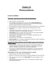 chpt_10_photosynthesis.doc