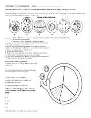 THE CELL CYCLE HW QUESTIONS.doc