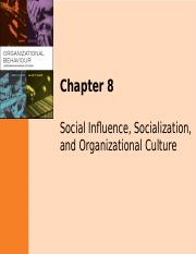 Notes_Ch 8_Social Influence_Socialisation_Culture