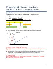 T06 Answer Guide(1)
