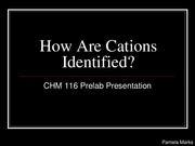 How Are Cations Identified_116 Prelab