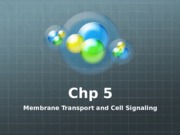 Lecture Slides-Mambrane and Cell Signaling