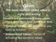 Bus160 ch4 Values