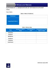Experiment_1_Data_Tables_and_Assessment (2).docx