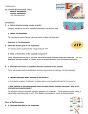 anim_cell_respiration_answer_key_ch03