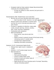 Neuro3Notes3-page25