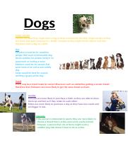 Dogs Market Campaign Activity.docx