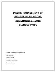 MG204 Assisgnment 1.docx